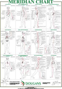 refleksologia-mapa-dougans3